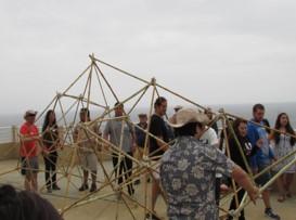 Be A Team Bamboo Building Nieuwkoopse Plassen